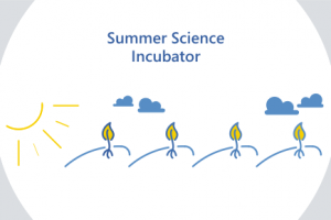 EYE – summer science incubator